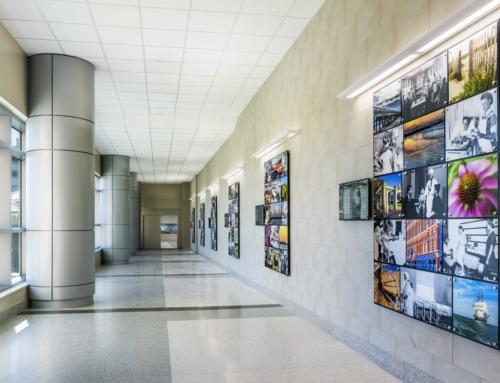 Art Aids Healing at UTMB's New Jennie Sealy Hospital—Galveston Daily News